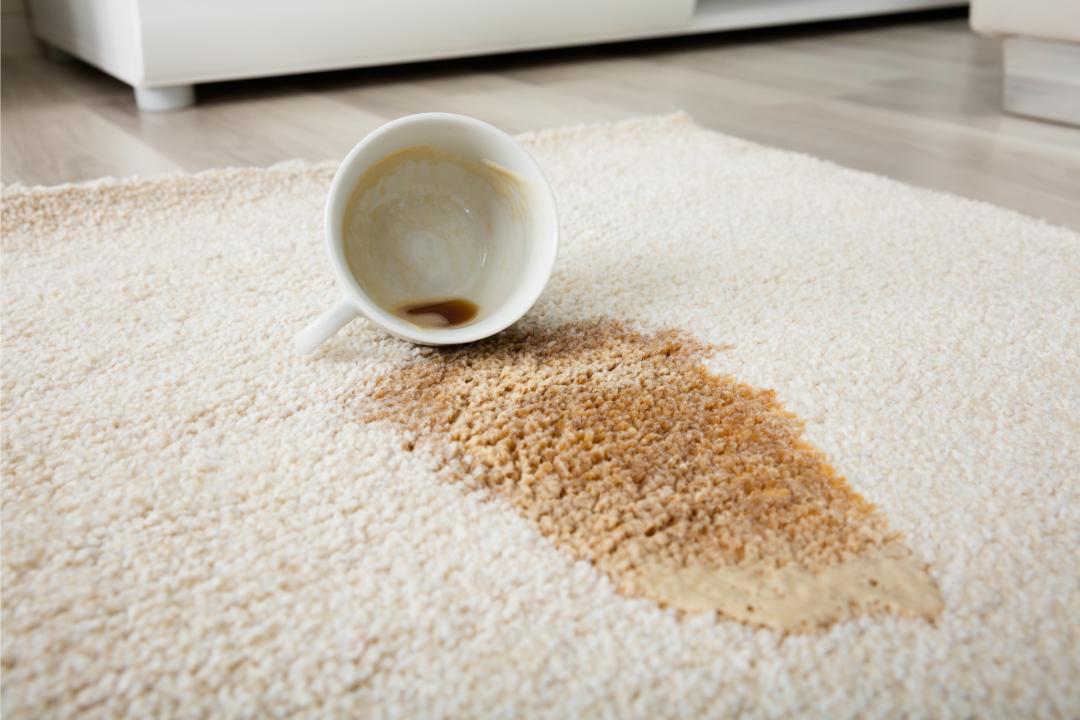 4 common carpet stains how to treat them